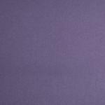 Glimmer Purple