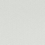 Persimmon White